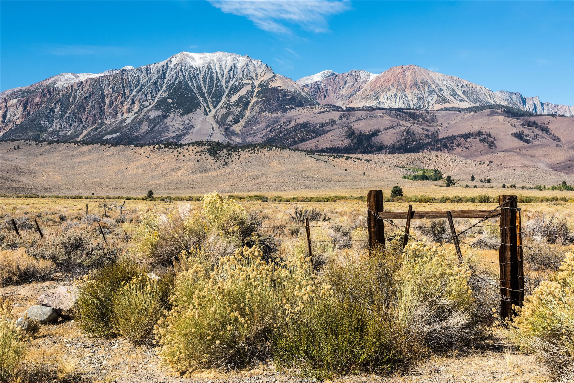 Eastern Sierra Scene -  by Dawn Jefferson
