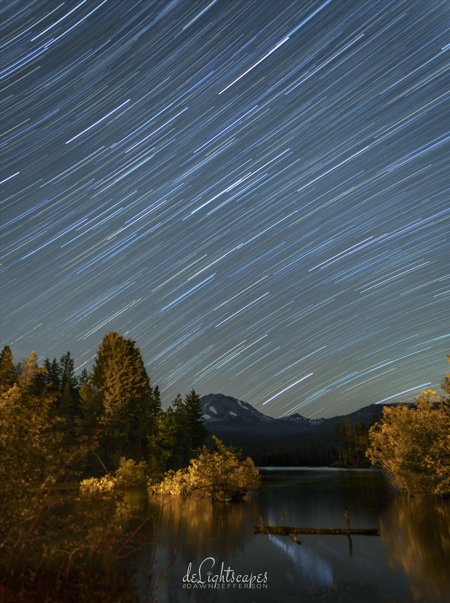 Star Trails in the Summer Sky -  by Dawn Jefferson