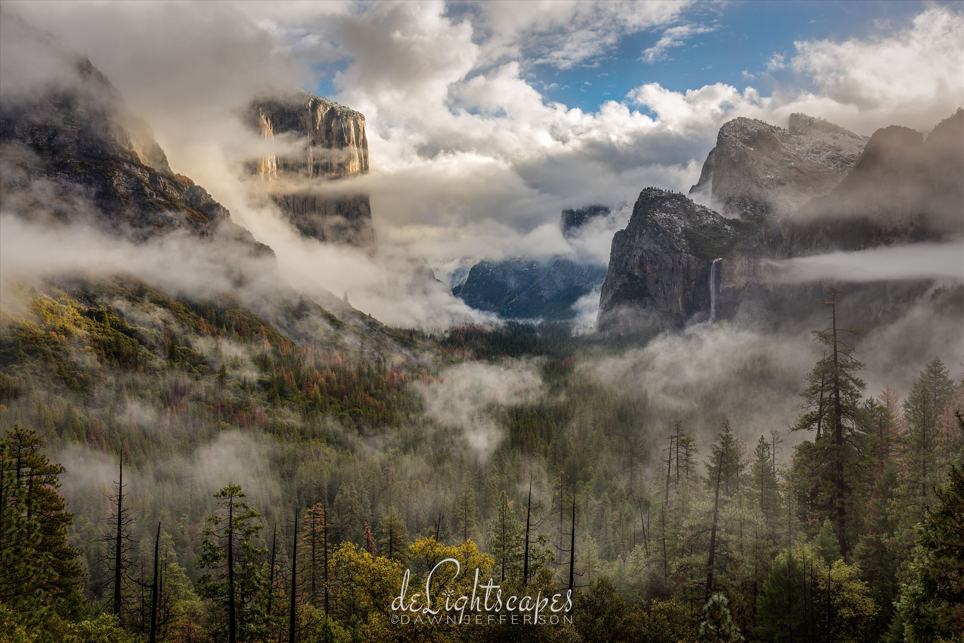 Clearing Storm Yosemite -  by Dawn Jefferson