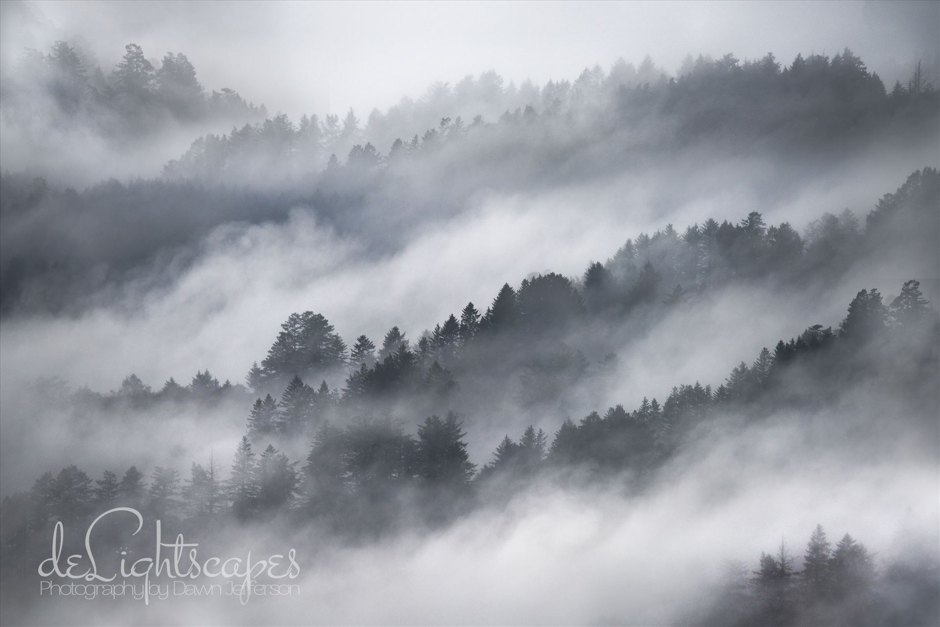 Misty Mountains -  by Dawn Jefferson