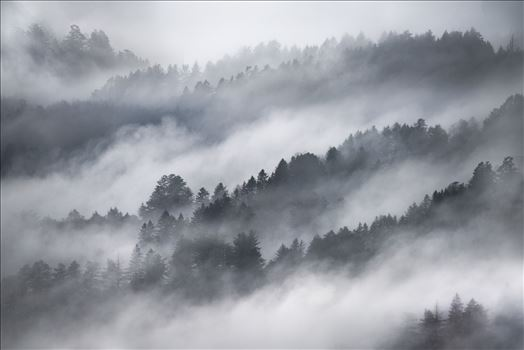 Misty Mountains -