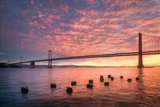 Cotton Candy Sunrise - A gorgeous pink sunrise at the San Francisco Bay Bridge