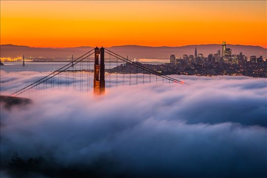 Above It All - Quintessential San Francisco
