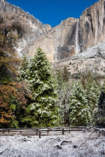 Yosemite Falls in Winter -